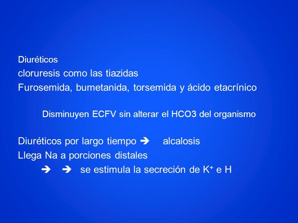 Diuréticos cloruresis como las tiazidas Furosemida, bumetanida, torsemida y ácido etacrínico Disminuyen ECFV sin alterar el HCO3 del organismo Diuréti