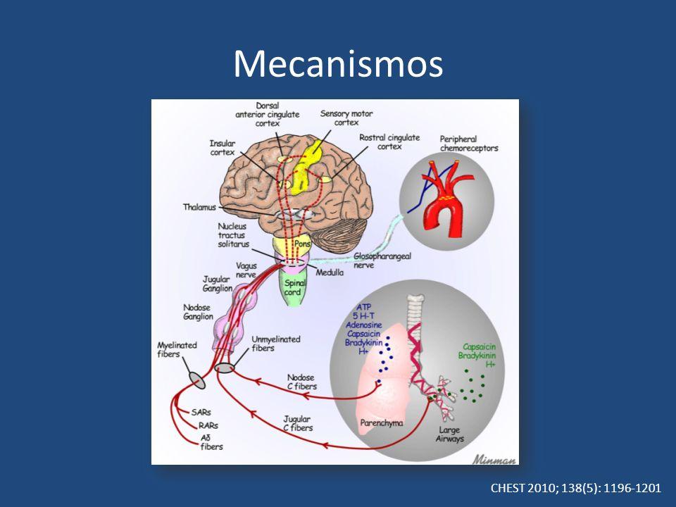 CHEST 2010; 138(5): 1196-1201 Mecanismos