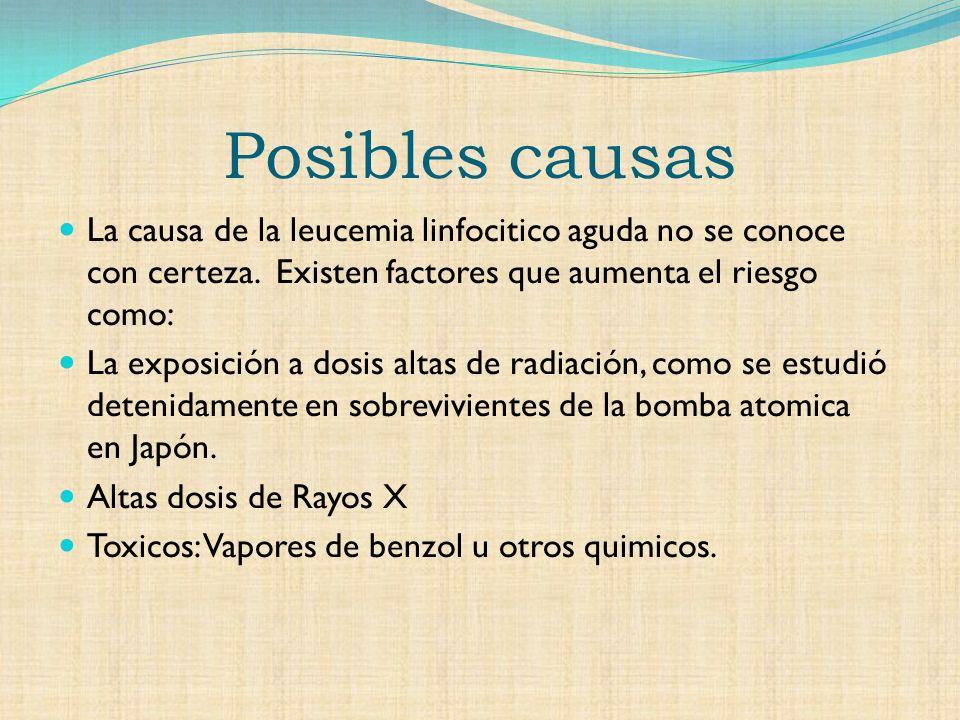 Posibles causas La causa de la leucemia linfocitico aguda no se conoce con certeza.