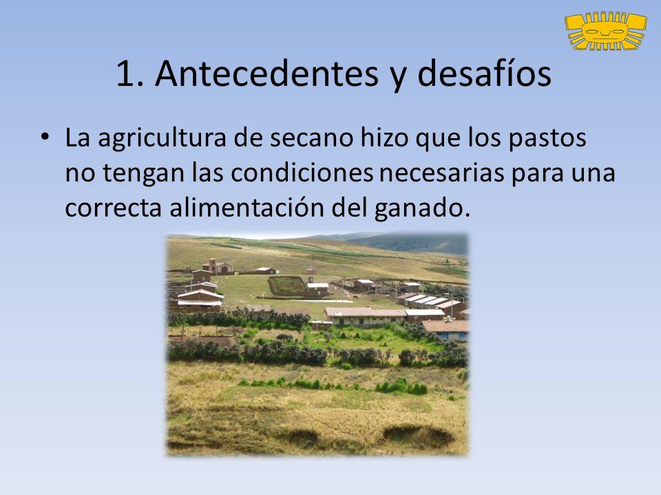 1. Antecedentes y desafíos La agricultura de secano hizo que los pastos no tengan las condiciones necesarias para una correcta alimentación del ganado