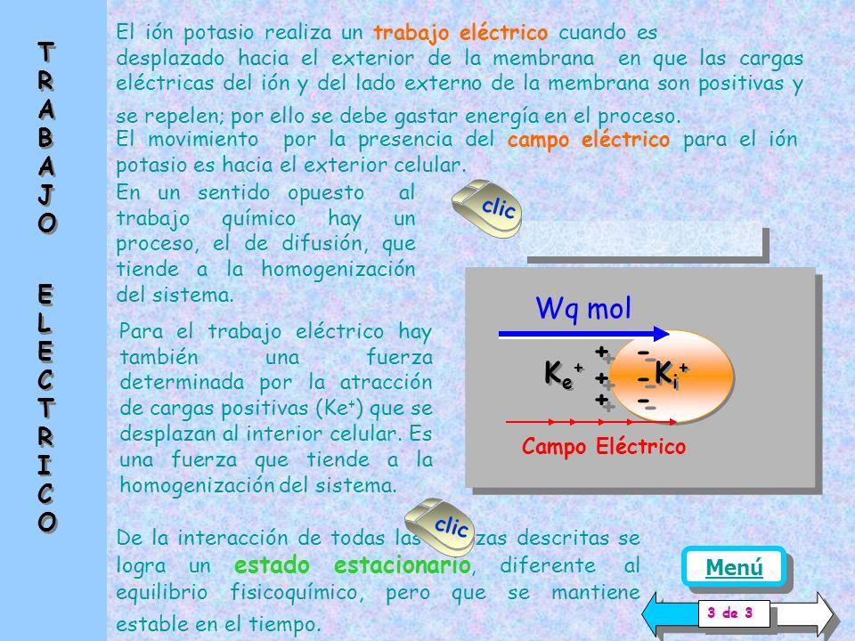 Ke+Ke+ Ke+Ke+ Ki+Ki+ Ki+Ki+ + - la valencia del ión (z) la diferencia de potencial eléctrico en la membra na ( dE = E i - E e ) la distancia a recorrer (dx) Se debe tener en cuenta, para cuantificar el trabajo eléctrico, la siguiente ecuación, que contiene la energía necesaria para mover un mol de sustancia (F= 96500 coulomb / mol) We = z F dE / dx Wq mol Campo Eléctrico Ee Ei TRABAJO ELECTRICOTRABAJO ELECTRICO T R A B A J O E L E C T R I C O 2 de 3 clic Menú We