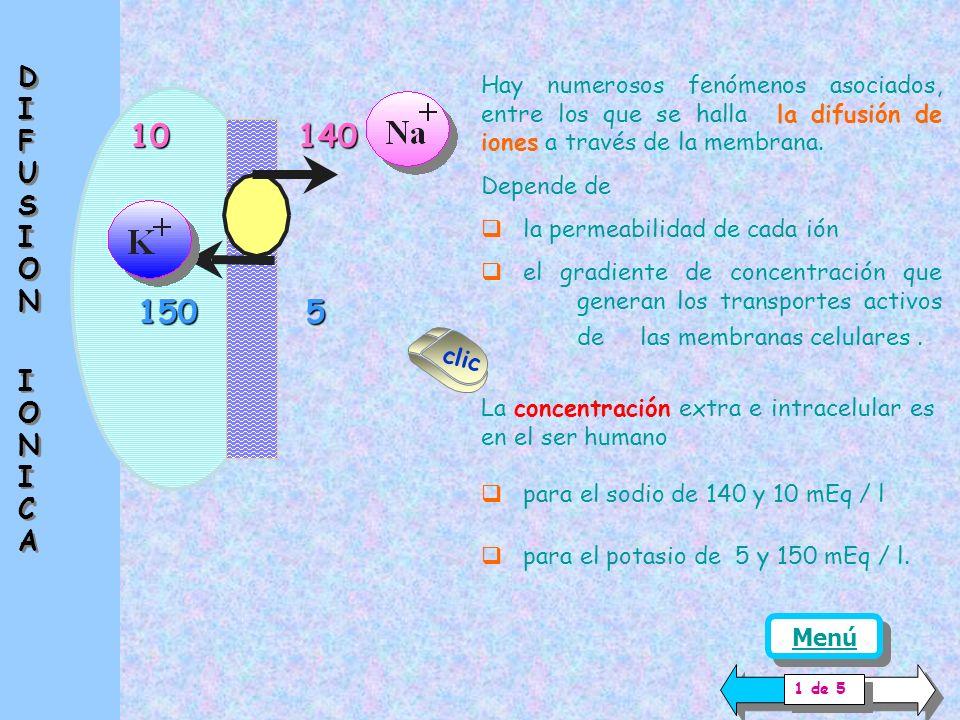 10 150 El movimiento a nivel de membrana a veces corresponde a unos pocas iones; puede crear confusión con el concepto de electroneutralidad.