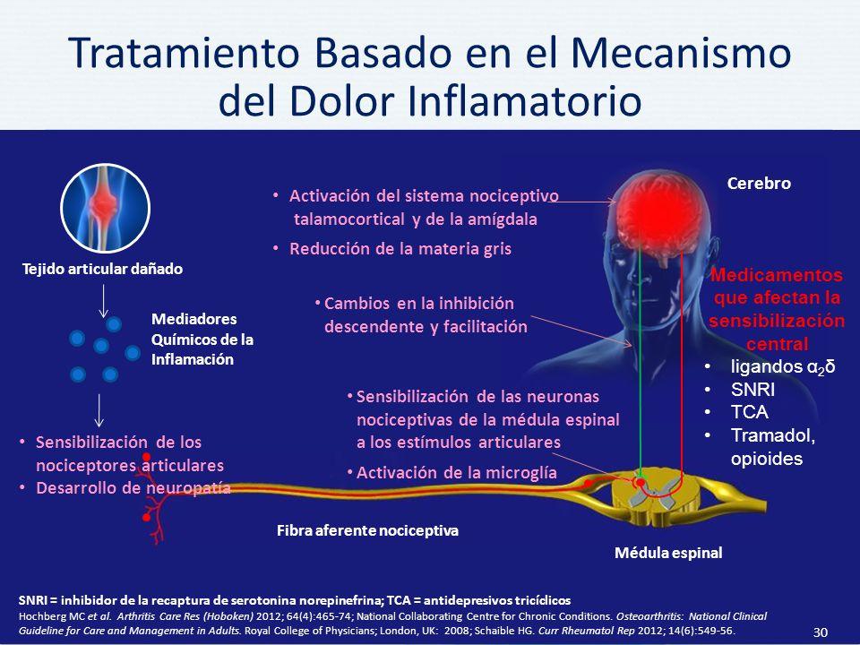 Tratamiento Basado en el Mecanismo del Dolor Inflamatorio 30 SNRI = inhibidor de la recaptura de serotonina norepinefrina; TCA = antidepresivos tricíclicos Hochberg MC et al.