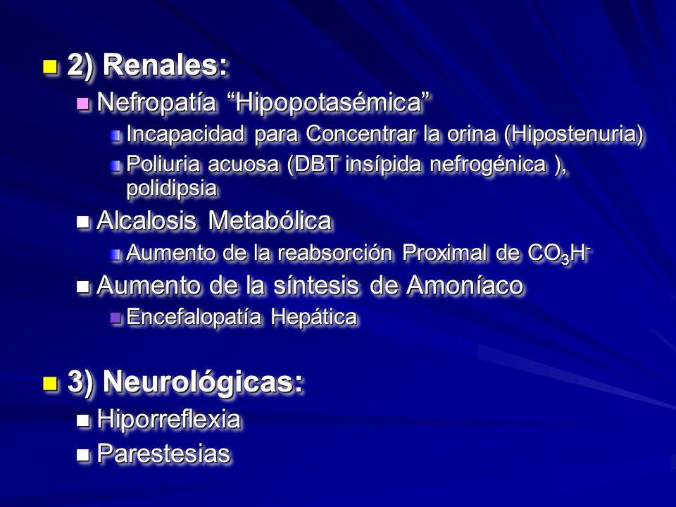n 2) Renales: n Nefropatía Hipopotasémica Incapacidad para Concentrar la orina (Hipostenuria) Poliuria acuosa (DBT insípida nefrogénica ), polidipsia
