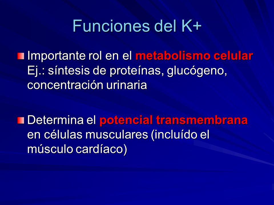 Funciones del K+ Importante rol en el metabolismo celular Ej.: síntesis de proteínas, glucógeno, concentración urinaria Determina el potencial transme