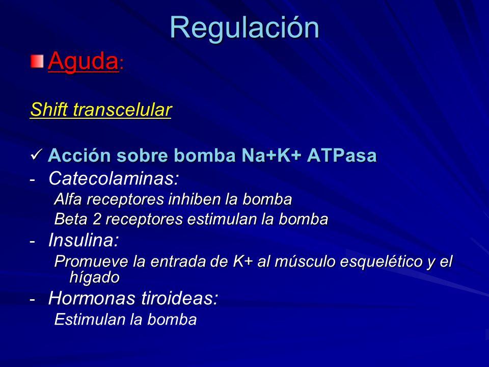 Regulación Aguda : Shift transcelular Acción sobre bomba Na+K+ ATPasa Acción sobre bomba Na+K+ ATPasa - - Catecolaminas: Alfa receptores inhiben la bo