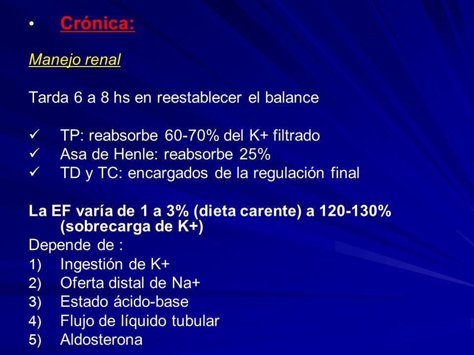 Crónica: Manejo renal Tarda 6 a 8 hs en reestablecer el balance TP: reabsorbe 60-70% del K+ filtrado Asa de Henle: reabsorbe 25% TD y TC: encargados d