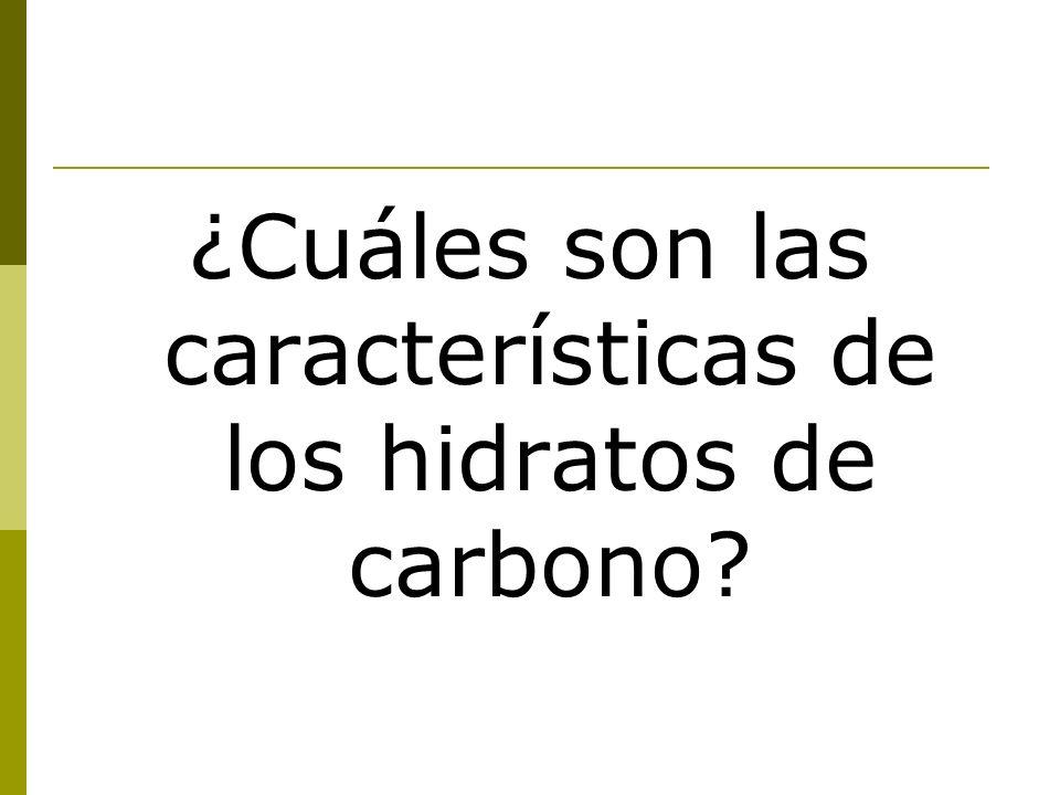 ¿Cuáles son las características de los hidratos de carbono?