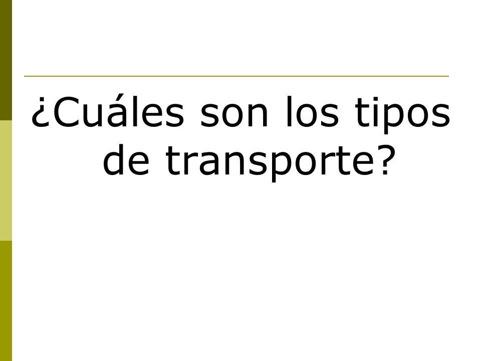 ¿Cuáles son los tipos de transporte?