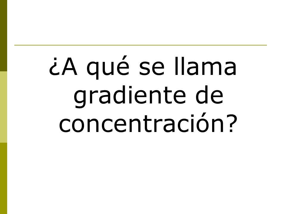 ¿A qué se llama gradiente de concentración?