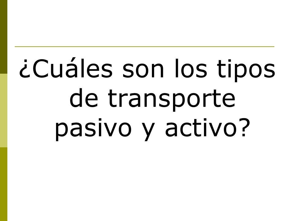 ¿Cuáles son los tipos de transporte pasivo y activo?