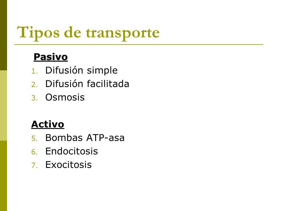 Tipos de transporte Pasivo 1. Difusión simple 2. Difusión facilitada 3. Osmosis Activo 5. Bombas ATP-asa 6. Endocitosis 7. Exocitosis