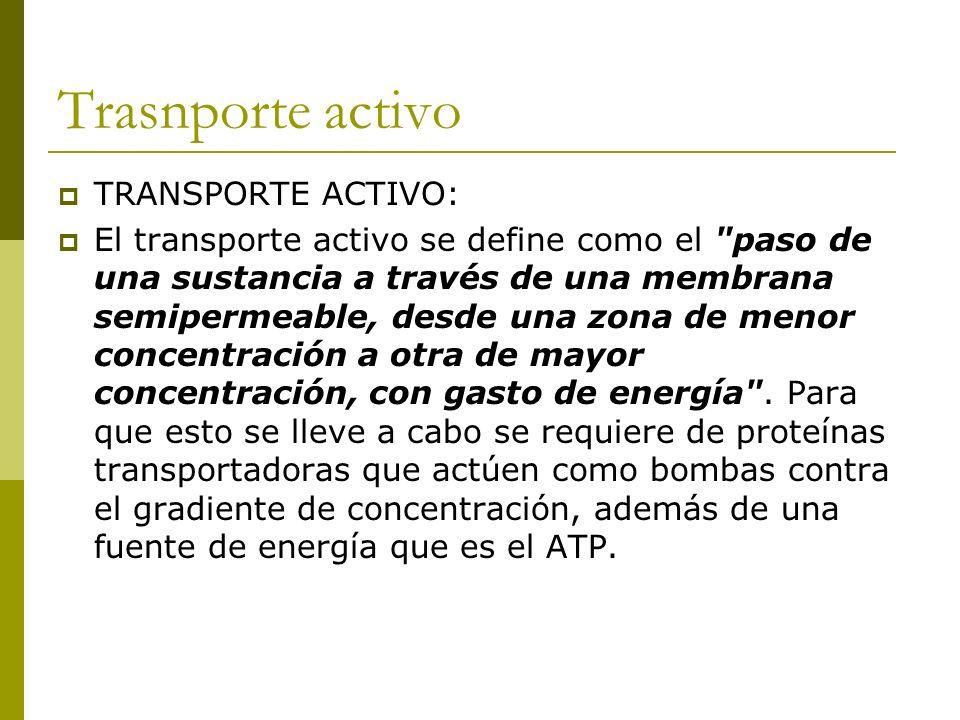 Trasnporte activo TRANSPORTE ACTIVO: El transporte activo se define como el