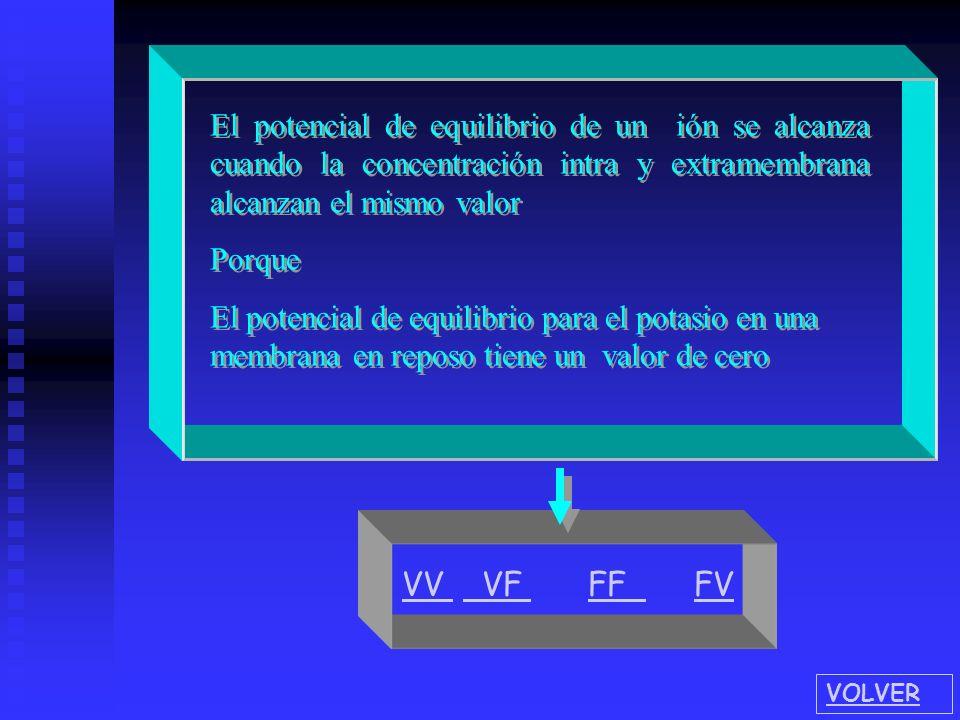 Ke+Ke+ Ki+Ki+ Señale en el gráfico dos elementos que son incorrectos - + + - + + We mol We mol Wq mol Wq mol VOLVER