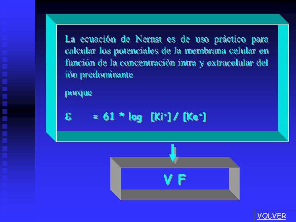 = 61 * log [ Ki + ] / [ Ke + ] La ecuación de Nernst es de uso práctico para calcular los potenciales de la membrana celular en función de la concentr