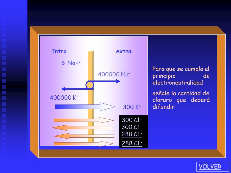 Intra extra 400000 Na + 400000 K + 6 Na+ Conociendo la relación de permeabilidad de la membrana celular para los iones sodio y potasio, marque la cant