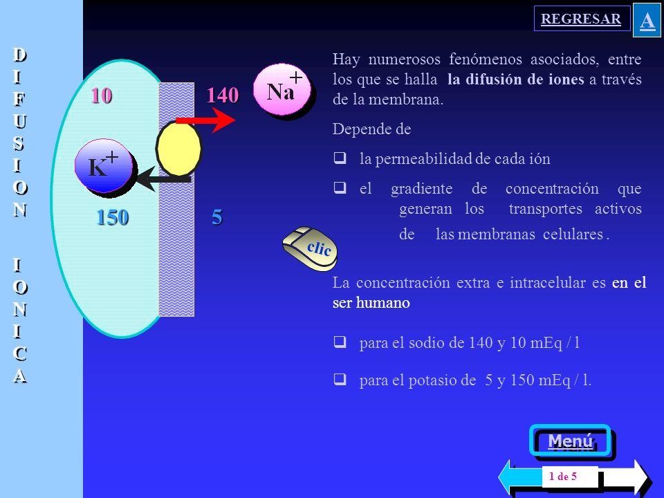 10 150 El movimiento a nivel de membrana a veces corresponde a unos pocas iones; puede crear confusión con el concepto de electroneutralidad. Esa modi