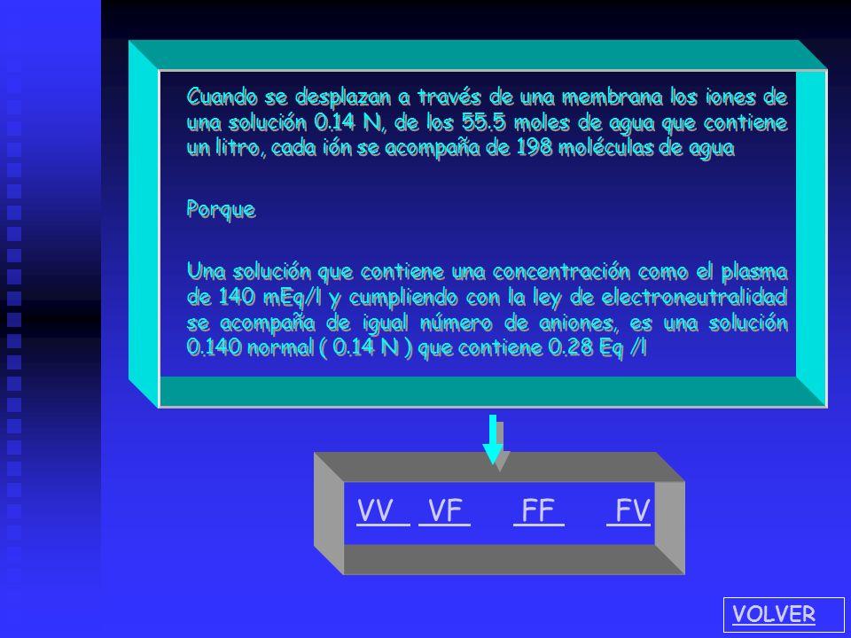 F V Debido al mantenimiento en estado estacionario los procesos activos de la bomba sodio-potasio y de la difusión iónica, se produce un ingreso irres