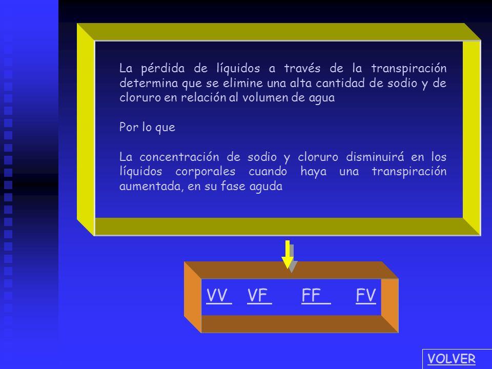 Cuando se realiza la reposición de líquidos debe tenerse en cuenta que: 1.- 1.- el sudor produce eliminación exagerada de sodio y cloruro 2.- 2.- la s