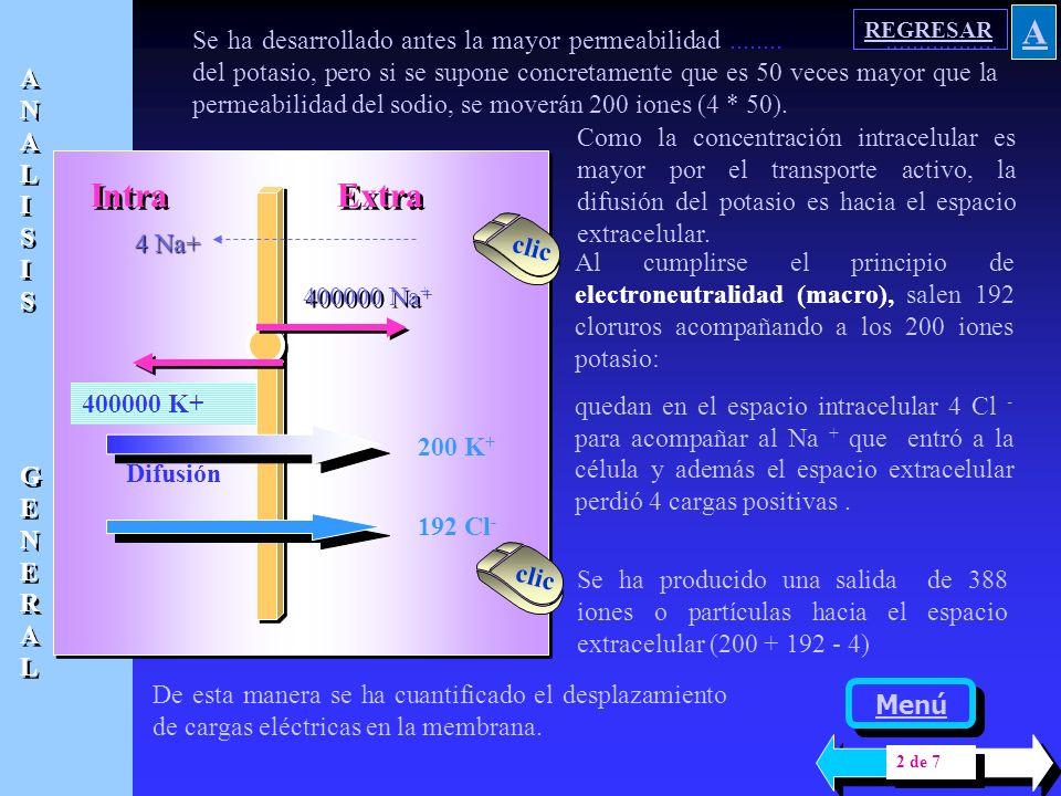 Se desarrolla un modelo presentado en el libro Physiology and Biophysics de Ruch y Patton para hacer algunas aproximaciones cuantitativas del equilibr