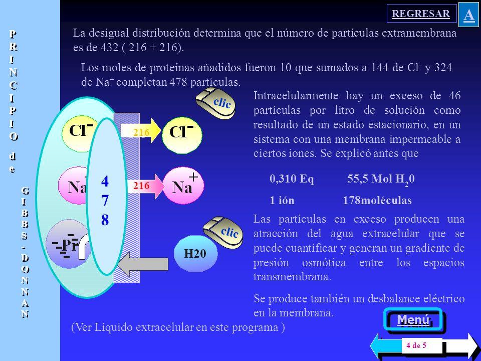 180 El principio de electroneutralidad se cumple, pues el número de cargas positivas es igual a las negativas, tanto en el espacio intra como extramem