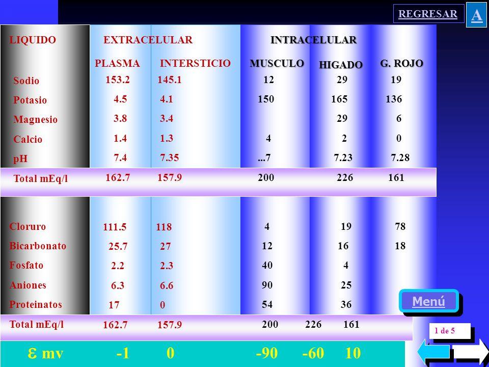 COMPOSICIONdelaCOMPOSICIONdela COMPOSICIONdelaCOMPOSICIONdela CELULACELULA CELULACELULA 180 160 140 120 100 80 60 40 20 0 mEq / l K+K+ Na + A-A- PO 4