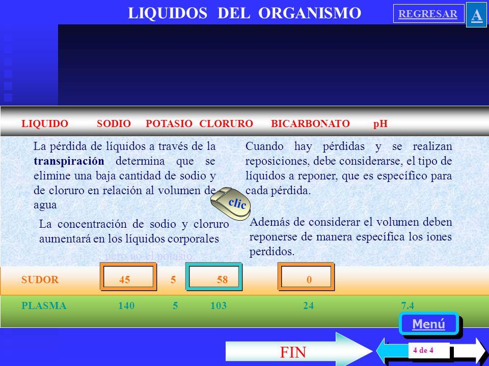 LIQUIDOS DEL ORGANISMO LIQUIDO SODIO POTASIO CLORURO BICARBONATO pH ORINA 10 a 1200 5 a 1000 10 a 1200 0 4.5 a 8 SALIVA 30 20 34 5 a 30 7 a 8 ESTOMAGO