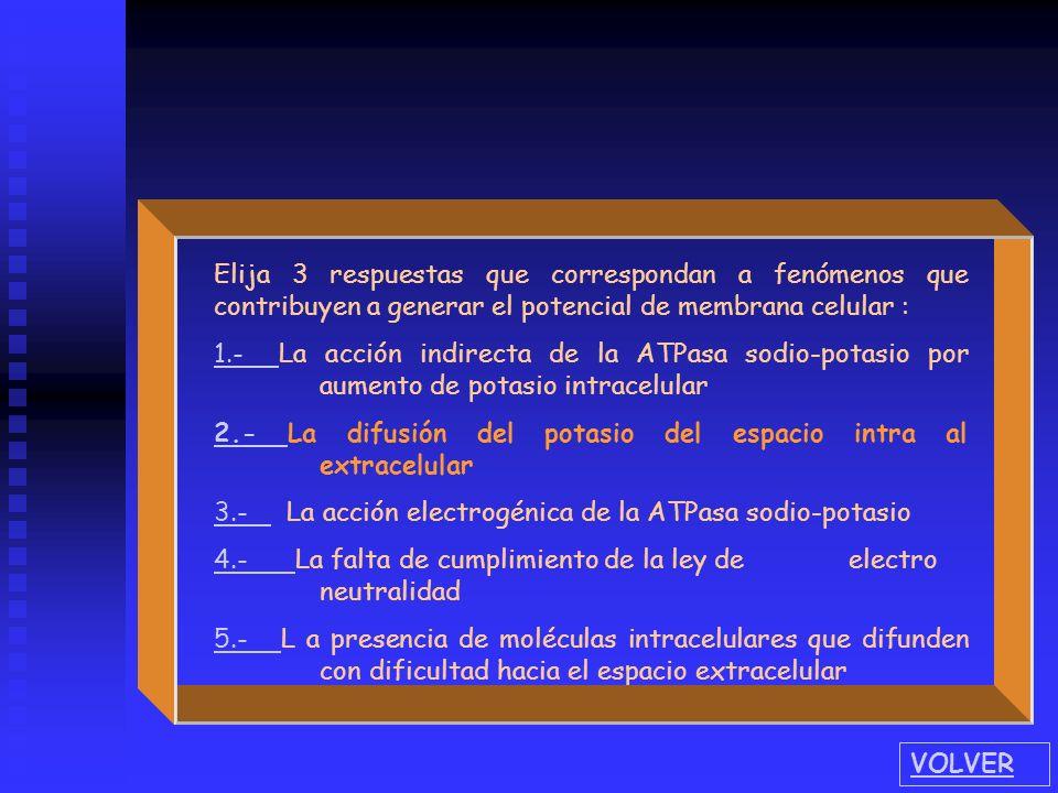 Elija 3 respuestases que correspondan a fenómenos que contribuyen a generar el potencial de membrana celular : 1.- 1.- La acción indirecta de la ATPas