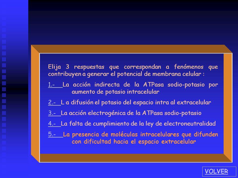 Elija 3 respuestas que correspondan a fenómenos que contribuyen a generar el potencial de membrana celular : 1.- 1.- La acción indirecta de la ATPasa