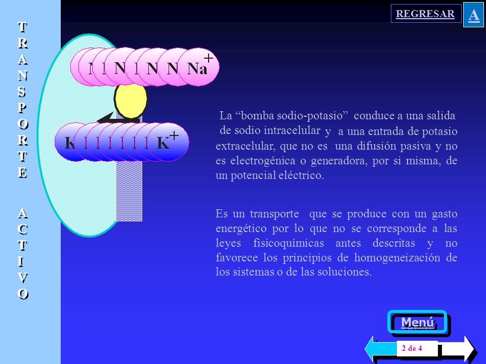 COMPOSICION IONICA COMPOSICION IONICA, LIQUIDOS DEL ORGANISMO Menú general Menú generalPLASMAPLASMA INTERSTICIOINTERSTICIO LIQUIDO INTRACELULAR DIFERENCIAS GENERALES EXCESO ANIONICO