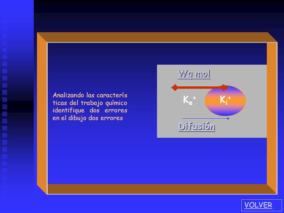 Ke+Ke+ Ki+Ki+ Wq mol Wq mol Difusión Analizando las caracterís ticas del trabajo químico identifique dos errores en el dibujo VOLVER
