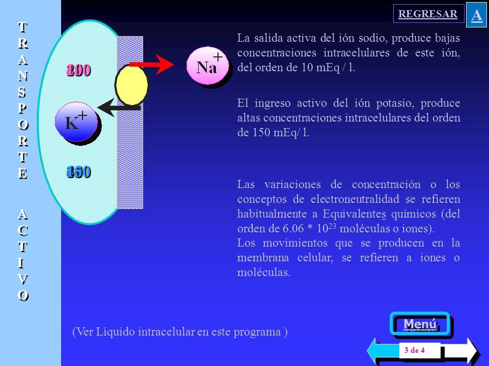 El modelo presentado supone una concentración de 0,310 Eq / l ( solución 0.150N ) Intra Extra 400000 Na + 400000 K + 4 Na+ Difusión 200 K + 192 Cl - En el programa ELECTROLITOS se explicó la pequeña disociación del agua, por lo que se acepta que su concentración es constante y de 55.5 Mol / l.