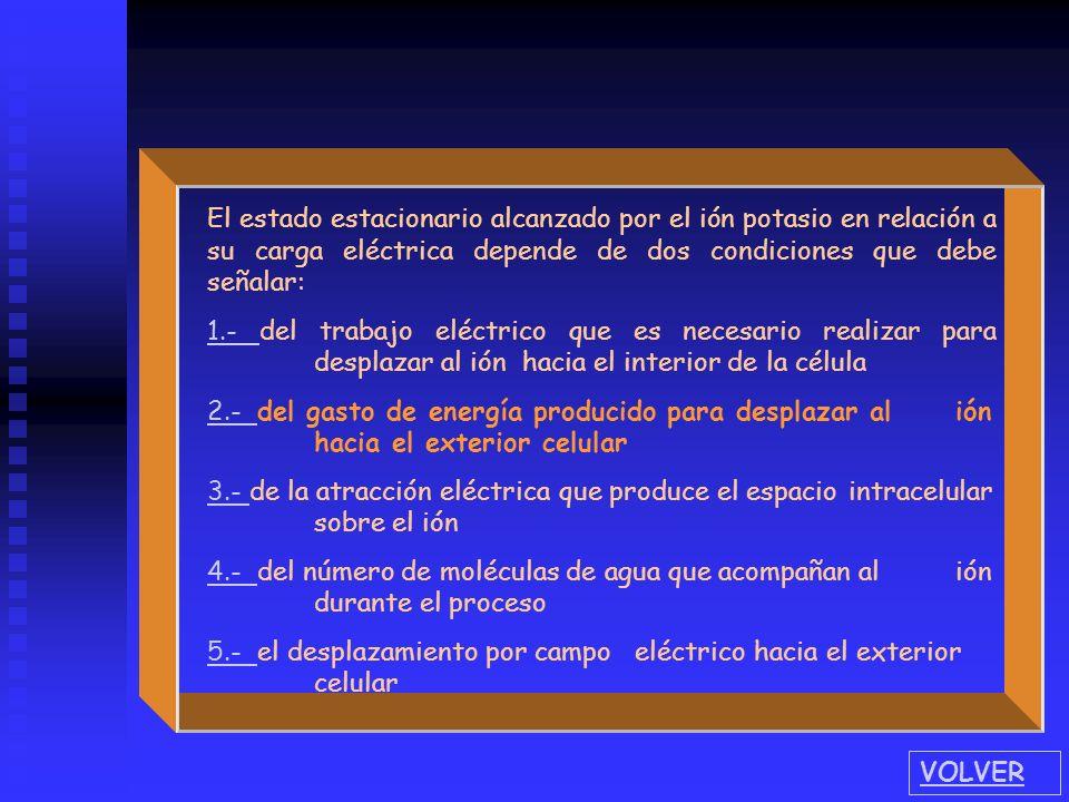 El estado estacionario alcanzado por el ión potasio en relación a su carga eléctrica depende de dos condiciones que debe señalar: 1.- 1.- del trabajo