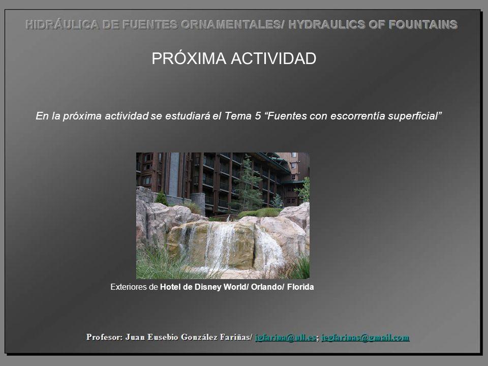 PRÓXIMA ACTIVIDAD En la próxima actividad se estudiará el Tema 5 Fuentes con escorrentía superficial Exteriores de Hotel de Disney World/ Orlando/ Flo