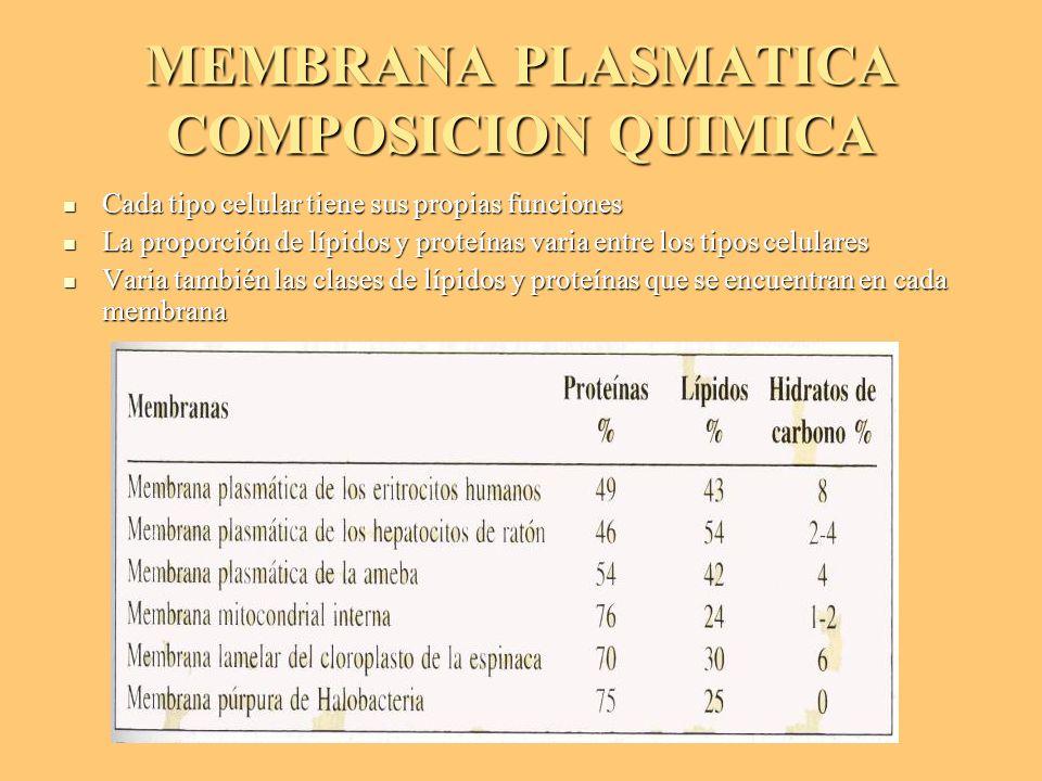 MEMBRANA PLASMATICA COMPOSICION QUIMICA Cada tipo celular tiene sus propias funciones Cada tipo celular tiene sus propias funciones La proporción de l