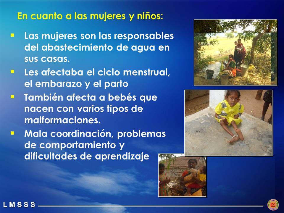 L M S S S En cuanto a las mujeres y niños: Las mujeres son las responsables del abastecimiento de agua en sus casas.