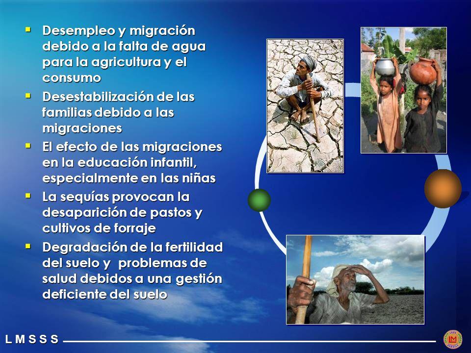 L M S S S Desempleo y migración debido a la falta de agua para la agricultura y el consumo Desempleo y migración debido a la falta de agua para la agricultura y el consumo Desestabilización de las familias debido a las migraciones Desestabilización de las familias debido a las migraciones El efecto de las migraciones en la educación infantil, especialmente en las niñas El efecto de las migraciones en la educación infantil, especialmente en las niñas La sequías provocan la desaparición de pastos y cultivos de forraje La sequías provocan la desaparición de pastos y cultivos de forraje Degradación de la fertilidad del suelo y problemas de salud debidos a una gestión deficiente del suelo Degradación de la fertilidad del suelo y problemas de salud debidos a una gestión deficiente del suelo