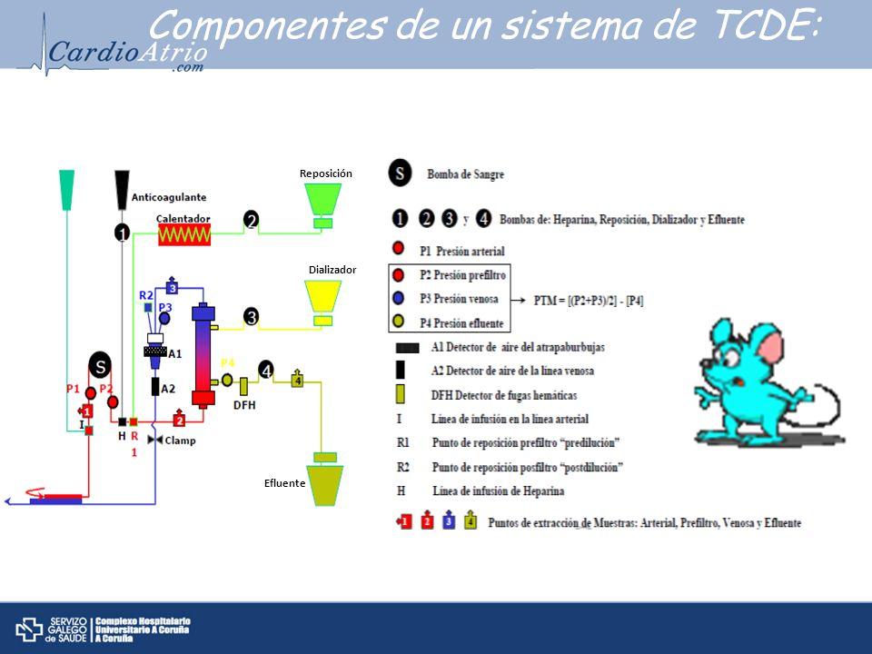 Componentes de un sistema de TCDE: Reposición Dializador Efluente