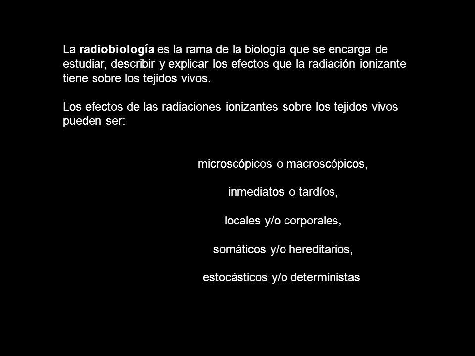 La radiobiología es la rama de la biología que se encarga de estudiar, describir y explicar los efectos que la radiación ionizante tiene sobre los tej
