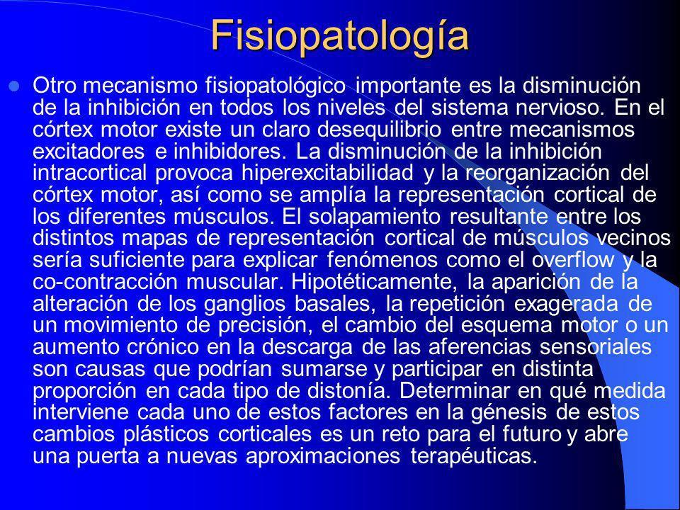 Fisiopatología Ningún modelo fisiopatológico es capaz de explicar por sí solo todos los tipos de distonía. Es incuestionable que alteraciones funciona