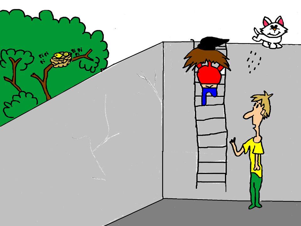 Una ves adentro se pierden en los pasillos del banco…