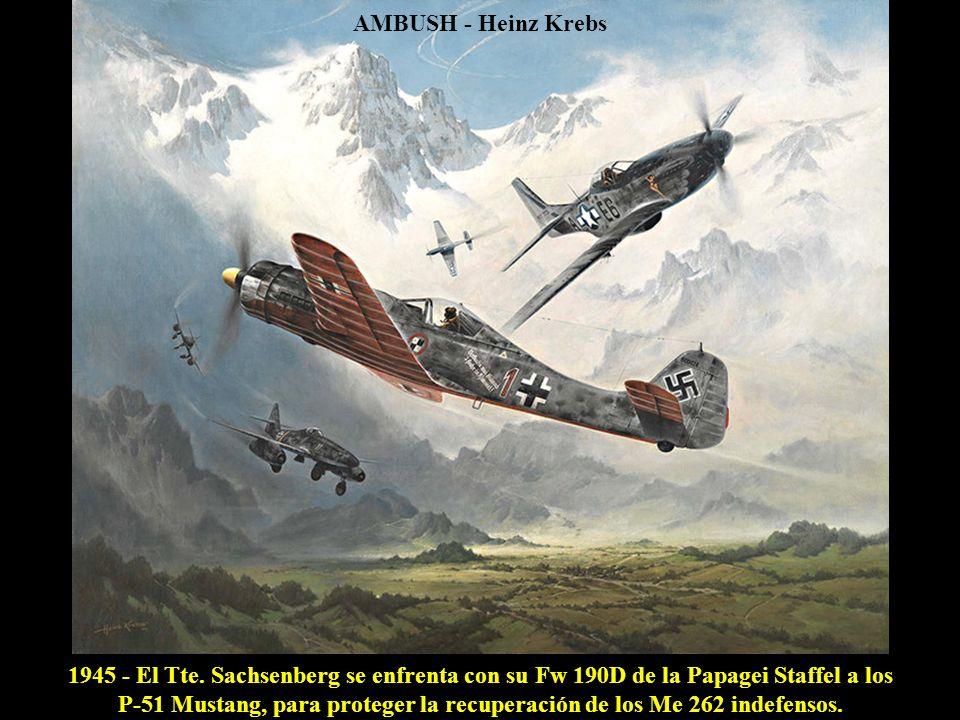 MISSION ACCOMPLISHED - Roy Grinnell 18 ABR 1943 - La emboscada de 16 P-38 Lightning finaliza con el derribo por el Tte Barber del Betty japonés, con el Almirante Yamamoto a bordo.