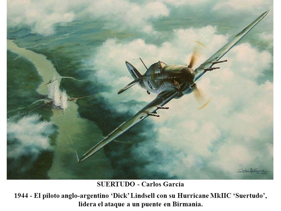 ONE THE HARD WAY - Dan Zoernig Día de Navidad 1941 - El Tte Dupuoy del 1stAVG Flying Tigers, agotada la munición, derriba un Oscar japonés cortándole el plano con su P-40 Tomahawk.