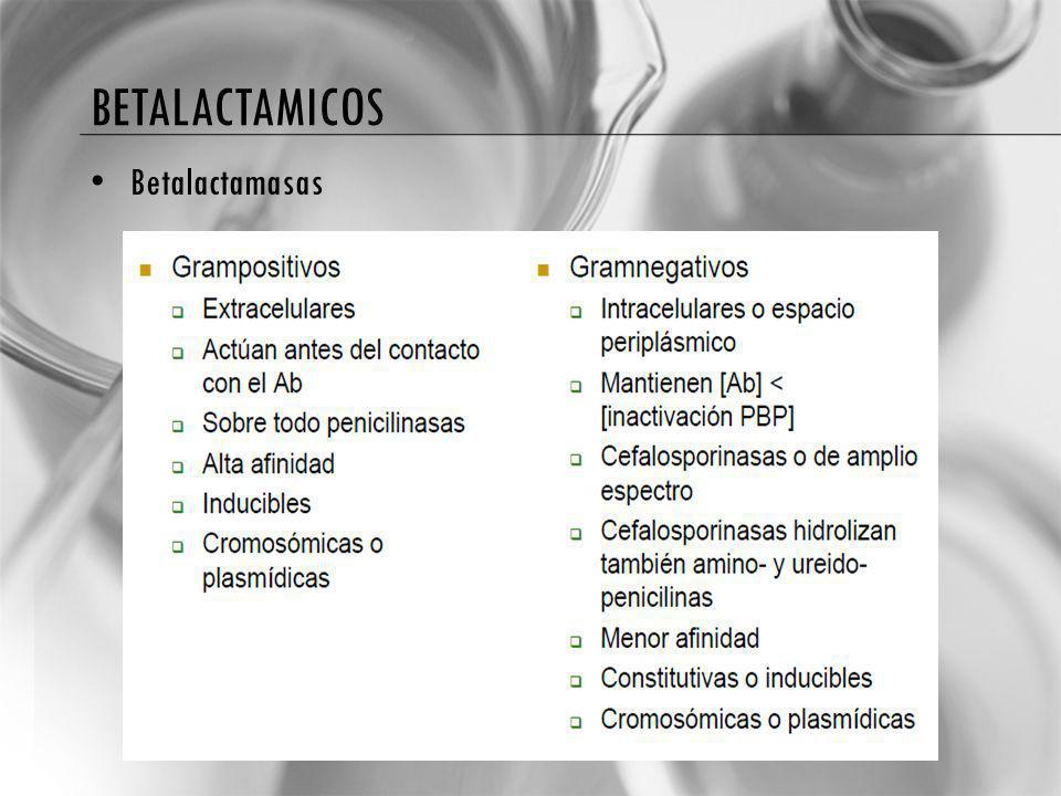 BETALACTAMICOS Betalactamasas