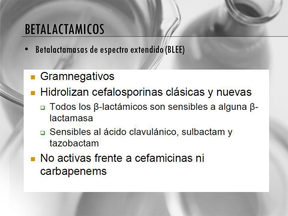 BETALACTAMICOS Betalactamasas de espectro extendido (BLEE)
