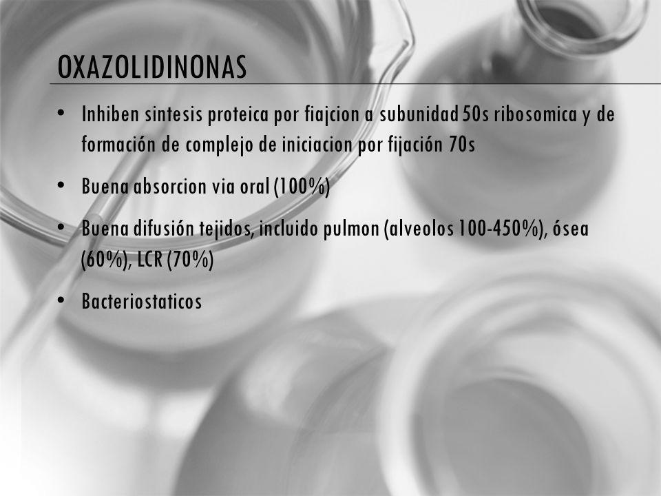 OXAZOLIDINONAS Inhiben sintesis proteica por fiajcion a subunidad 50s ribosomica y de formación de complejo de iniciacion por fijación 70s Buena absorcion via oral (100%) Buena difusión tejidos, incluido pulmon (alveolos 100-450%), ósea (60%), LCR (70%) Bacteriostaticos