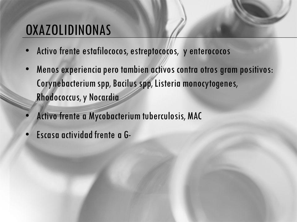 OXAZOLIDINONAS Activo frente estafilococos, estreptococos, y enterococos Menos experiencia pero tambien activos contra otros gram positivos: Corynebacterium spp, Bacilus spp, Listeria monocytogenes, Rhodococcus, y Nocardia Activo frente a Mycobacterium tuberculosis, MAC Escasa actividad frente a G-