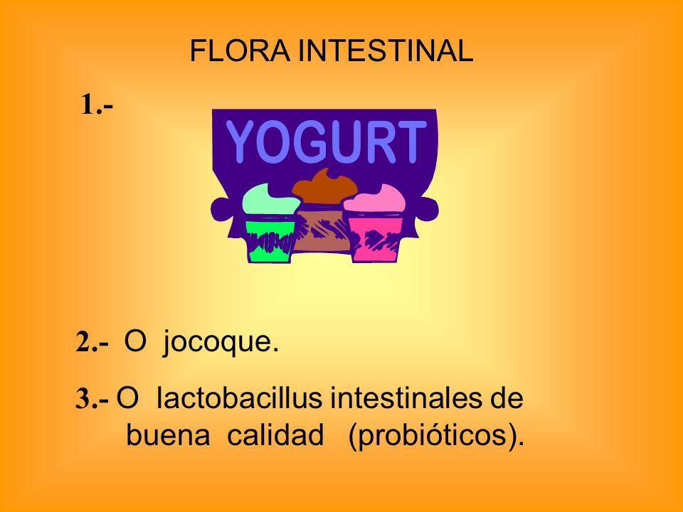 FLORA INTESTINAL 3.- O lactobacillus intestinales de buena calidad (probióticos). 1.- 2.- O jocoque.