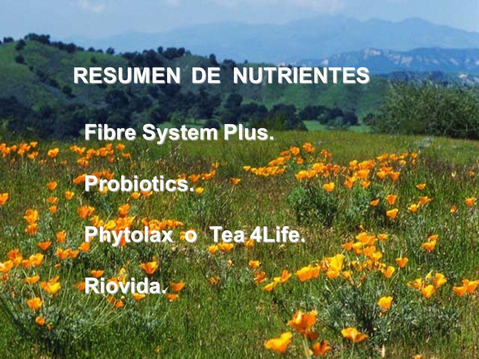 RESUMEN DE NUTRIENTES Fibre System Plus. Probiotics. Phytolax o Tea 4Life. Riovida.