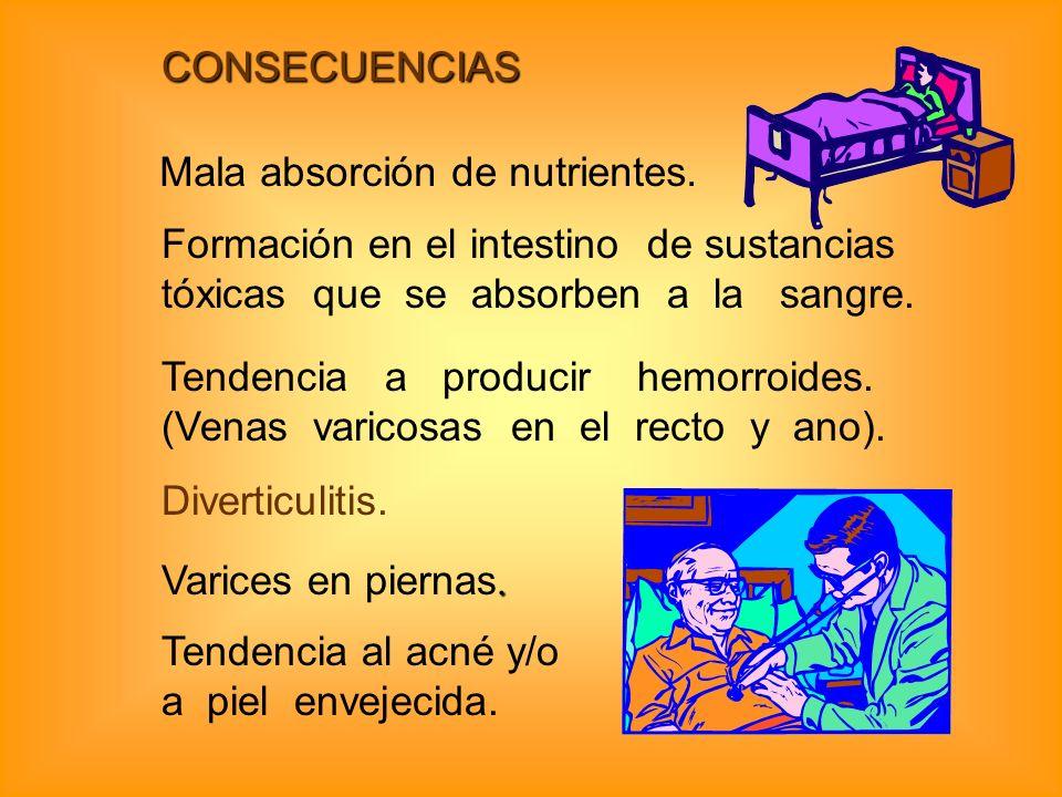 CONSECUENCIAS Mala absorción de nutrientes. Formación en el intestino de sustancias tóxicas que se absorben a la sangre. Tendencia a producir hemorroi